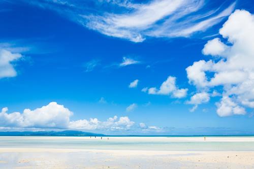 夏になれば海と太陽